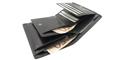 Novčanici